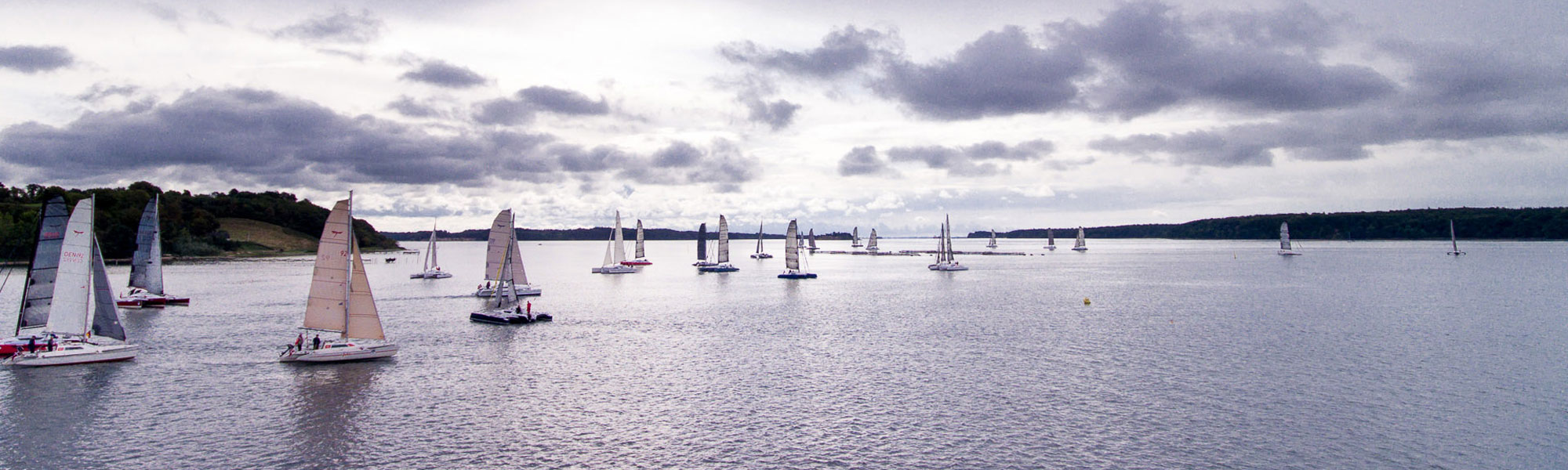 Dragonfly trimaran fleet of 30+ boats at owners event